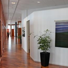 """Lill Sjöström """" Kolmekümne esimene korrus"""" - Isiknäitus Kista Science Tower, Stockholm"""