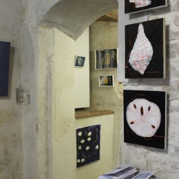 Åsa Bujon 'Opera Maritima' - Solo Exhibition at Kunstisalong Allee, Tallinn