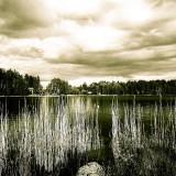 Elin Ulman-Pilved I