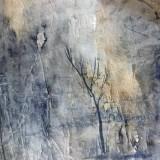 Imbi Rahumaa-Metsa valgus