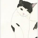 kickie-hogstrom-katt