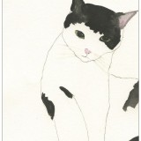 Kickie Högström-Katt