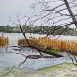 Bertil Eriksson-Vid Brommasjön
