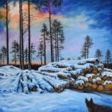 Kjell Fogborn-Avskogning