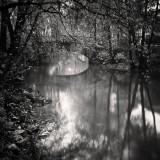 Frang Dushaj-Autumn scene
