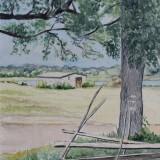 Bertil Eriksson-Trädet vid gärdsgården
