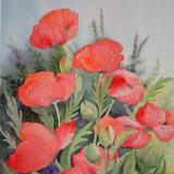 Lillian Roos Ahlforn-Glädjespridare
