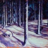 Kjell Fogborn-Efter snöstorm
