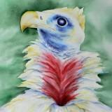 Merike Sule Trubert-Freedom / Liberté