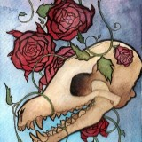 Josefine Walther-Beautiful decay