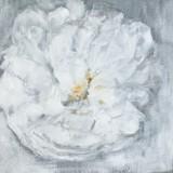 Kickie Högström-Rose 4