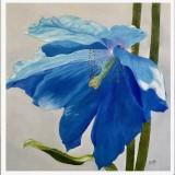 Sirpa Mettiäinen-The last flower / La dernière fleur