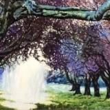 Siegfried Pichler-Eindringendes licht