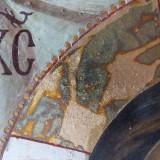 jelena-kimsdotter-detail-mandylion-2